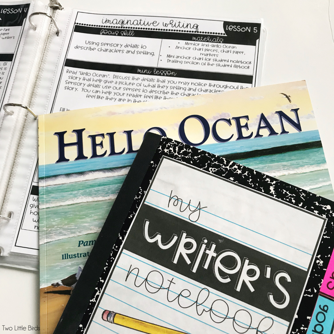 writing workshop mentor text mini lessons